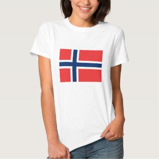 Bandera noruega playeras