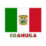 Bandera oficiosa de Coahuila Tarjetas Postales