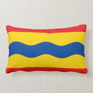 Bandera Países Bajos de Overijssel país-región Almohada