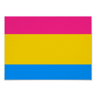 Bandera Pansexual del orgullo Póster