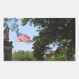 Bandera Rectangular Pegatinas