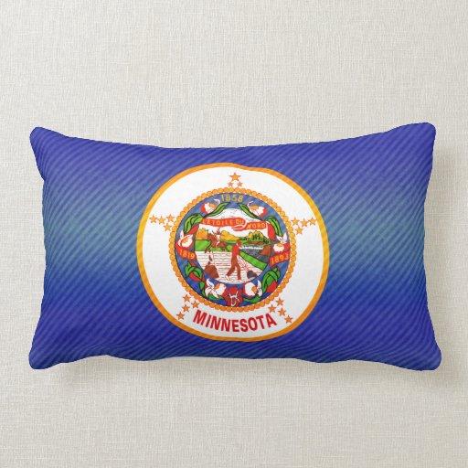 Bandera pelada moderna del Minnesotan Almohada