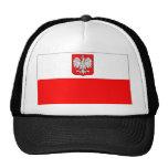 Bandera polaca con Eagle Gorro