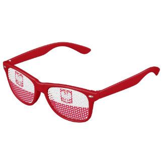 Bandera polaca gafas de fiesta