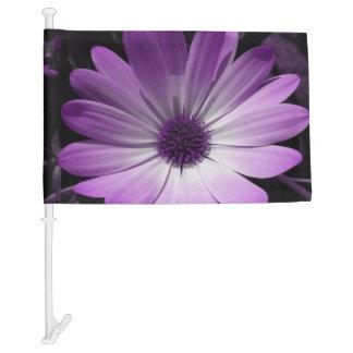 Bandera púrpura del coche de la flor de la