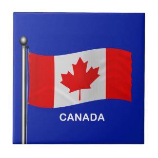 Bandera que agita de Canadá Tejas