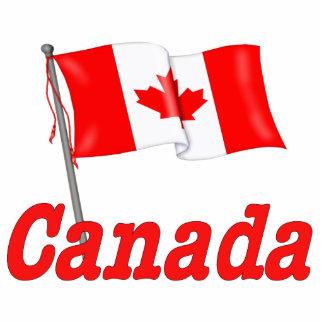 Bandera que agita de Canadá Fotoescultura Vertical