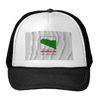 Bandera que agita de Emilia-Romagna Gorras