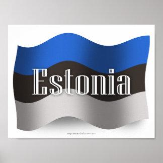 Bandera que agita de Estonia Póster