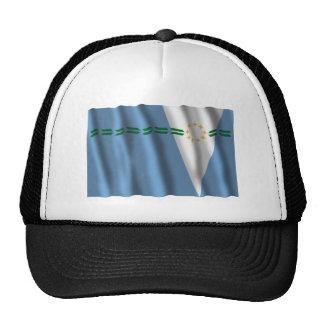 Bandera que agita de Formosa Gorras De Camionero
