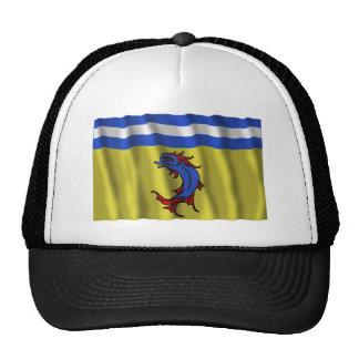 Bandera que agita de Isère Gorros