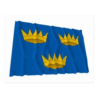 Bandera que agita de la provincia de Munster Postal
