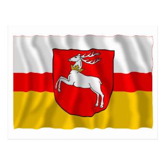 Bandera que agita de Lubelskie - de Lublin Postal