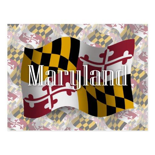 Bandera que agita de Maryland Tarjeta Postal