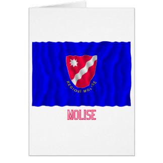 Bandera que agita de Molise con nombre Felicitacion