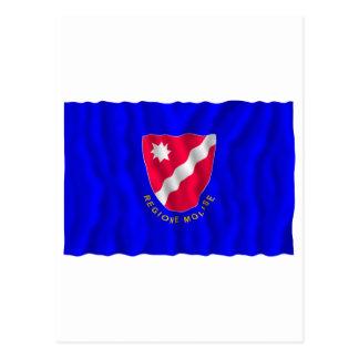 Bandera que agita de Molise Postal