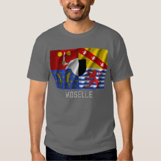 Bandera que agita de Mosela con nombre Camisas