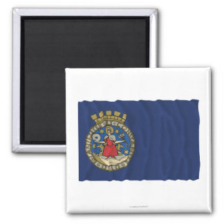 Bandera que agita de Oslo Imán De Frigorifico