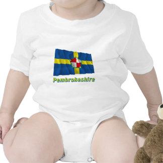 Bandera que agita de Pembrokeshire con nombre Trajes De Bebé