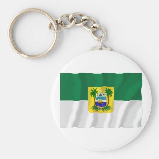 Bandera que agita de Rio Grande do Norte, el Brasi Llavero Redondo Tipo Pin