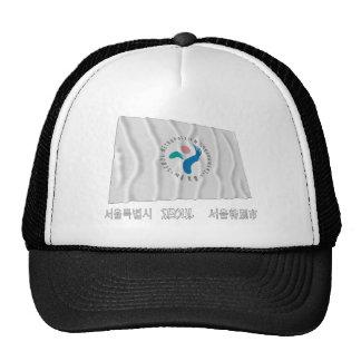Bandera que agita de Seul con nombre Gorros