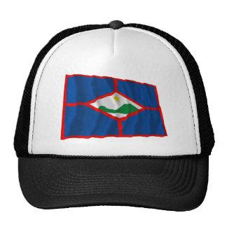 Bandera que agita de Sint Eustatius Gorras De Camionero