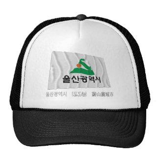 Bandera que agita de Ulsan con nombre Gorras