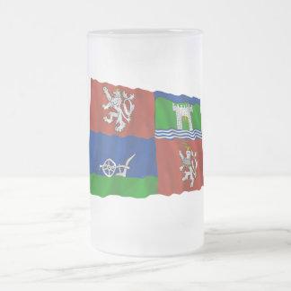Bandera que agita de Usti nad Labem Taza De Cristal