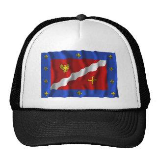 Bandera que agita de Val-d'Oise Gorras