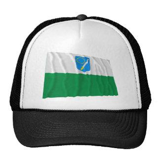 Bandera que agita de Võru Gorra