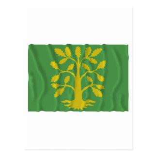 Bandera que agita del Chaleco-Agder Postal