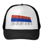 Bandera que agita del República Serbia Gorro