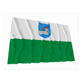 Bandera que agita Ida-Viru Postales