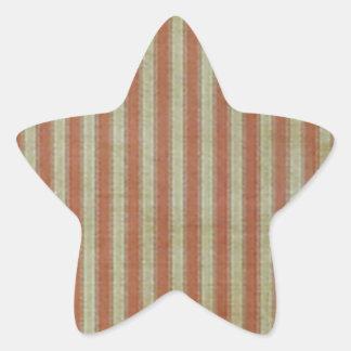 Bandera resistida pegatina en forma de estrella