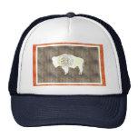Bandera retra de Wyoming del vintage Gorra