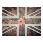 Bandera rosada de Union Jack Británicos (Reino Postal