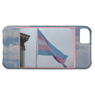 Bandera San Francisco del transexual