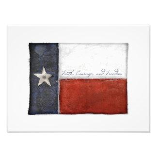 Bandera solitaria de la estrella de Tejas Cojinete