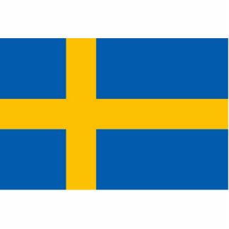 Bandera sueca esculturas fotograficas