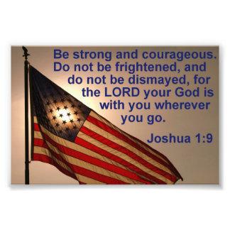 Bandera Sunlit con el 1:9 de Joshua Impresion Fotografica