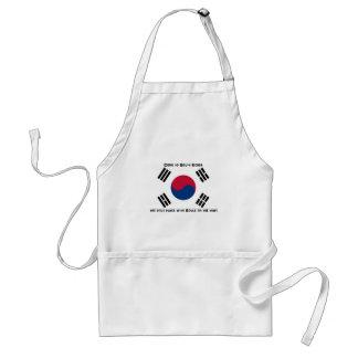 Bandera surcoreana delantales