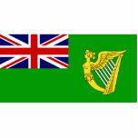Bandera verde, bandera de Irlanda Escultura Fotográfica