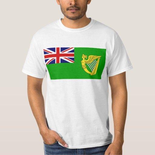 Bandera verde, bandera de Irlanda Playera