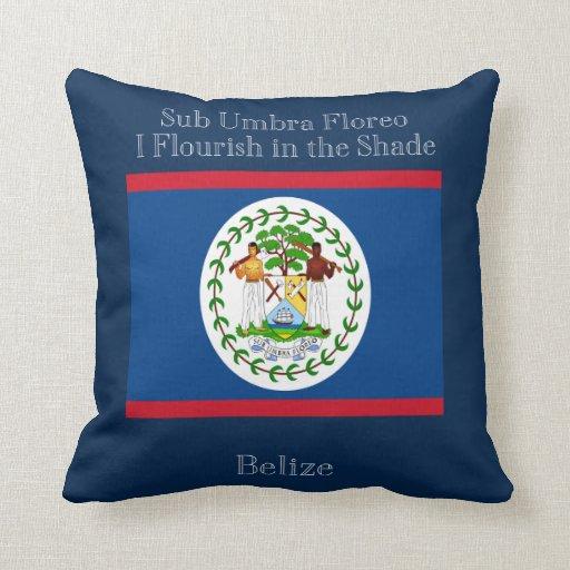 Bandera y lema de Belice Almohada