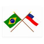 Banderas cruzadas del Brasil y de Amazonas Postales