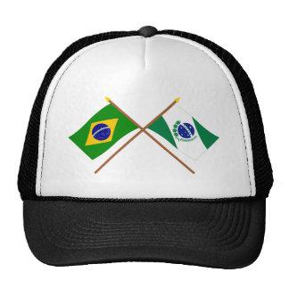 Banderas cruzadas del Brasil y de Paraná Gorros