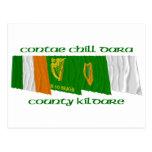 Banderas de Kildare del condado Tarjeta Postal