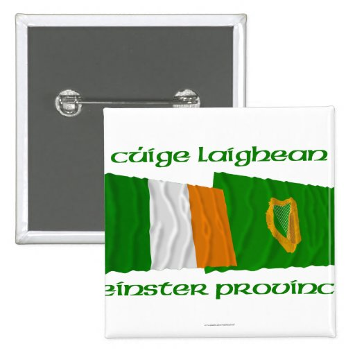 Banderas de la provincia de Irlanda y de Leinster Pins
