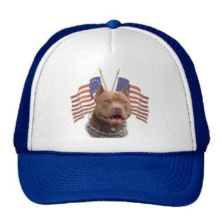 banderas del pitbull dos gorras