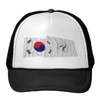 Banderas que agitan de Corea y de Seul Gorro